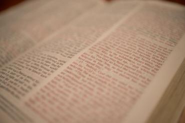 le affinità elettive frasi