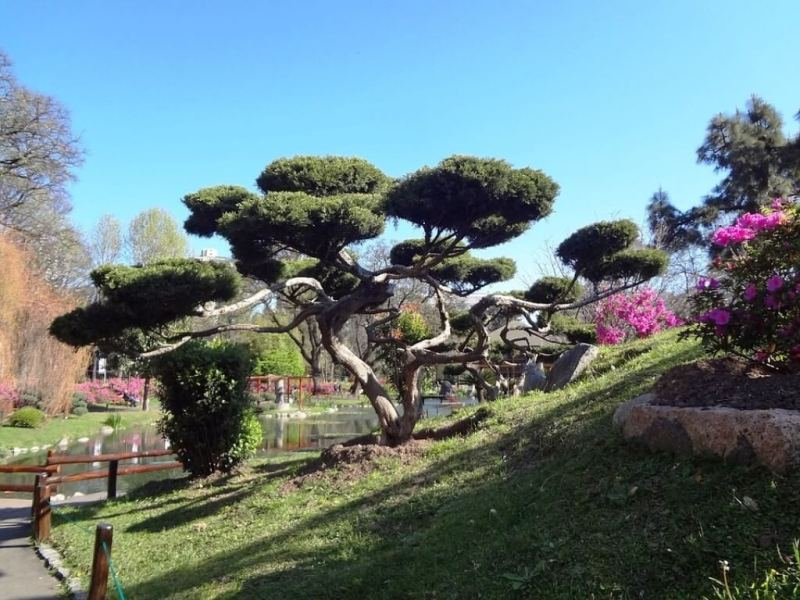 Jardin Japones - Buenos Aires Itinerary