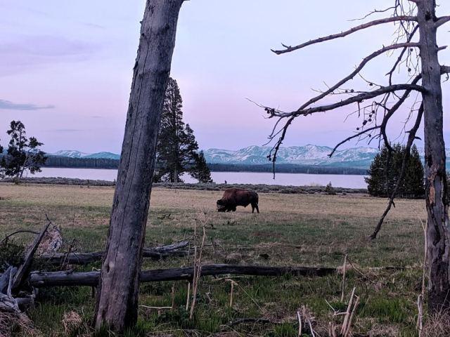 Yellowstone Lake - Beautiful Lakes In The United States