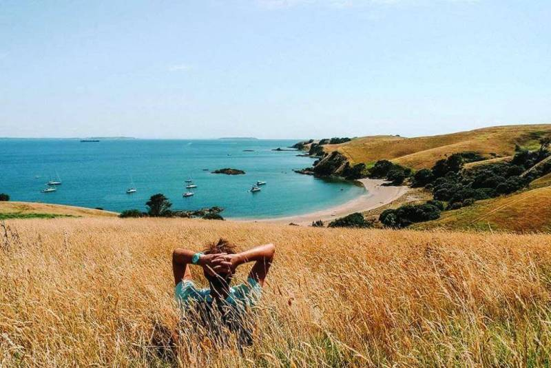Motutapu Island - Beautiful Islands In New Zealand