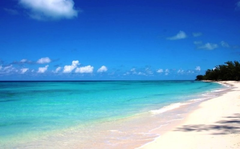 Things To Do In Bimini, Bahamas
