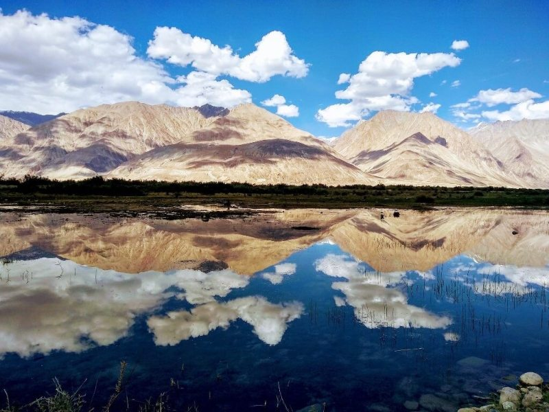 Nubra Valley, Ladakh - Places to Visit in North India in Summer with Family