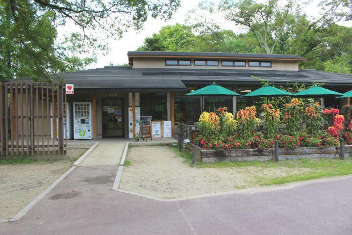 kyotofuritsushokubutsuen8
