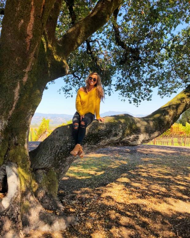 Cheery and Charming_MacMurray Estate Vineyards_MacMurray Ranch14