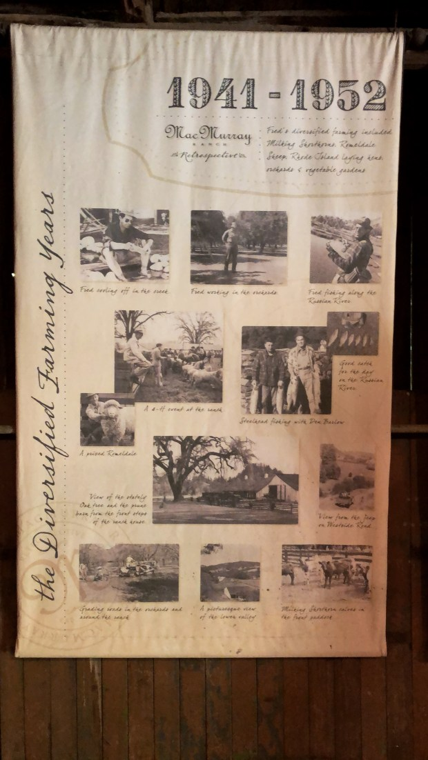 Cheery and Charming_MacMurray Estate Vineyards_MacMurray Ranch9