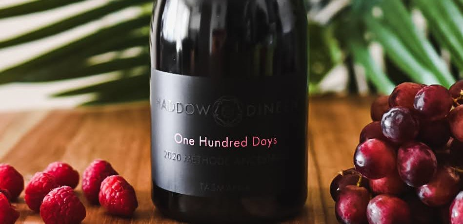 Haddow Dineen One Hundred Days 2020