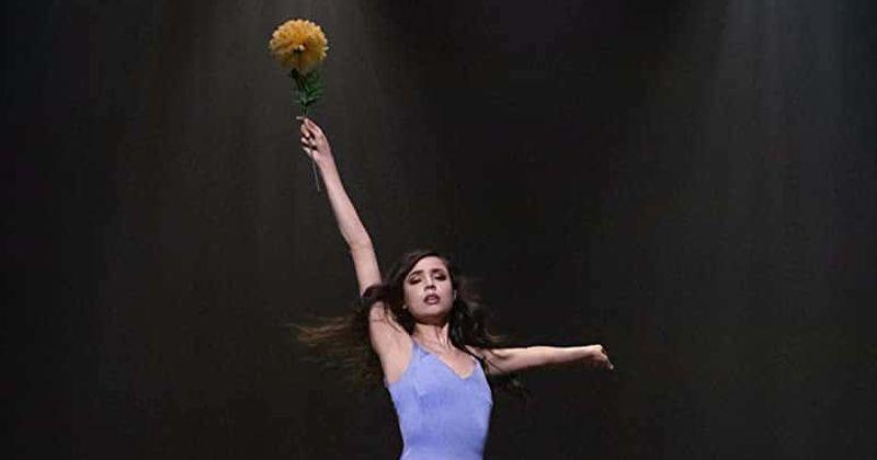 'Feel the Beat': la película de baile de Netflix tiene a los fanáticos entusiasmados con los movimientos de baile del elenco y la actuación de Sofia Carson