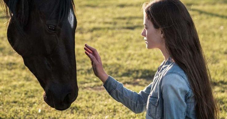 'Black Beauty': Conoce a Kate Winslet, Mackenzie Foy, Iain Glen y el resto del elenco de la adaptación de la novela de Anna Sewell