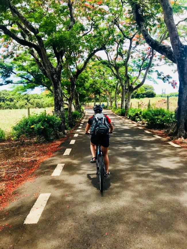 Biketour auf Mauritius