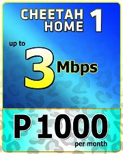 Cheetah Home 1000-1.png