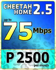 Cheetah Home 2500-1.png