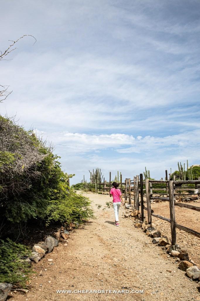 A young girl walks through Aruba Ostrich Farm