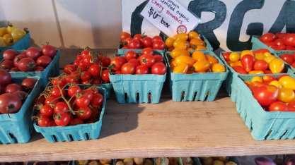 Cherry tomatoes at Green Thumb Farm
