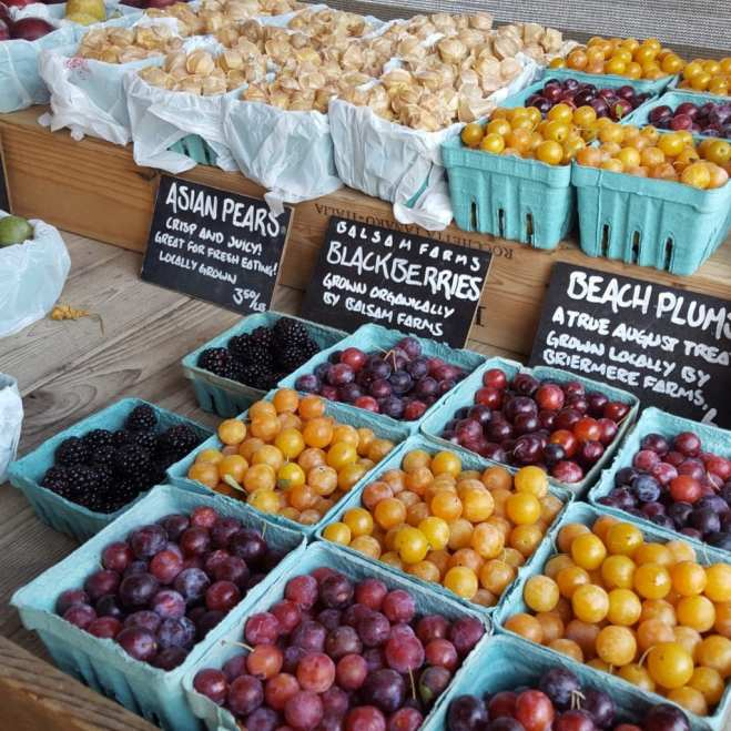 Local Asian pears, blackberries and beach plums