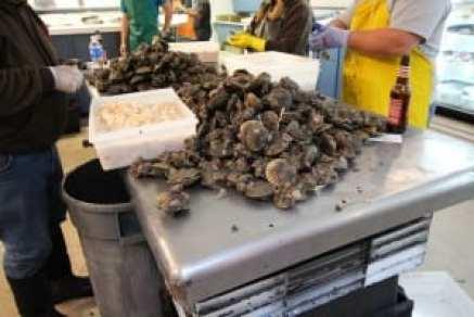 Peconic Bay scallops
