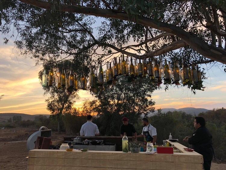 frida campestre, valle de guadalupe, baja california, mexico fine dining, mexican chefs, latino chefs, chef rosie, latina chef
