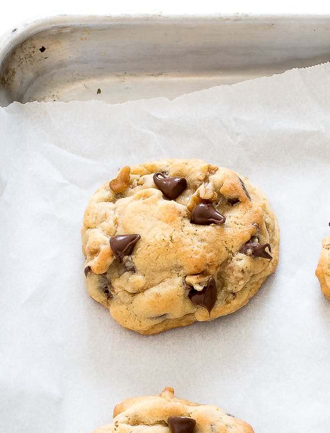 Chocolate Chip Walnut Cookies | chefsavvy.com