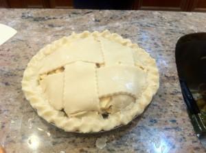 pie newbies 1