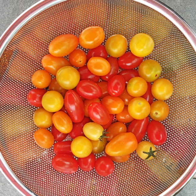 True Rebel Tomatoes Mix