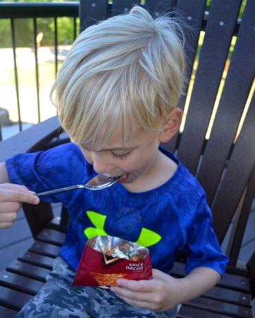 portable picnic Ryker with walking taco