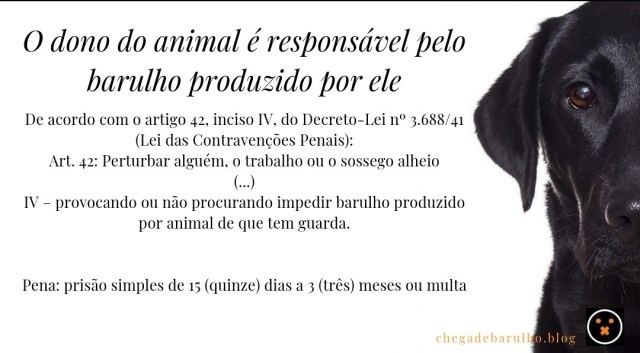 Post_10_(Barulho_Cachorro)