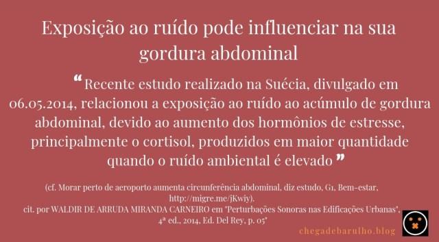 Post_NOVO_02_(Influencia_Dieta)
