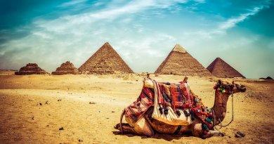 Египет возобновляет международное авиасообщение