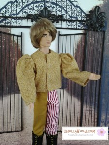 Image of Ken doll dressed in puff-sleeve Renaissance shirt and bi-colored pants.