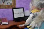 The image shows the Chelly Wood doll (designed to look like the real Chelly Wood, a doll clothing designer) seated at her computer in an office setting. The screen shows the URL of Chelly's website: ChellyWood.com. Beside the computer, on Chelly's des, there is a stack of old-fashioned library books because in Chelly's day job, she works as a school librarian. On the wall behind Chelly's computer, we see a painting of Notre Dame cathedral because Chelly also speaks French.