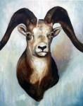 Ram Trophy_ChelseaLawrick