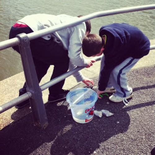Crabbing at Mudeford Quay