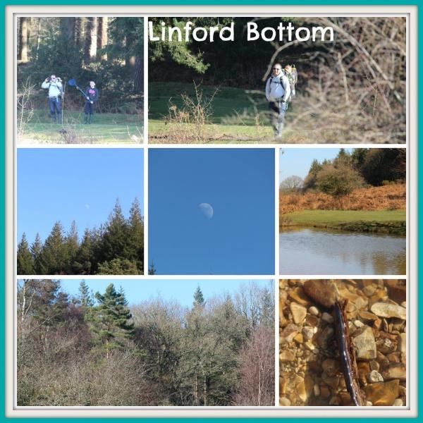 Linford Bottom