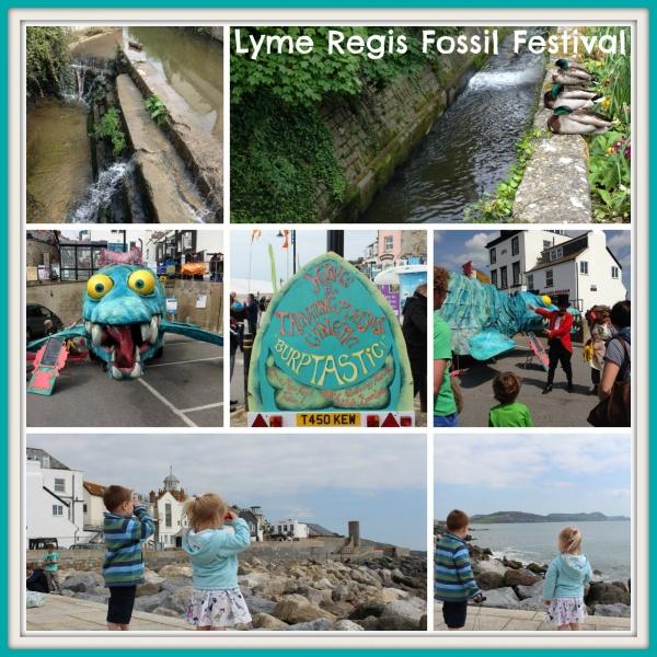 Fossil Festival