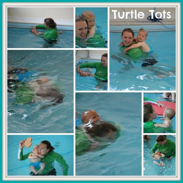 Turtle Tots