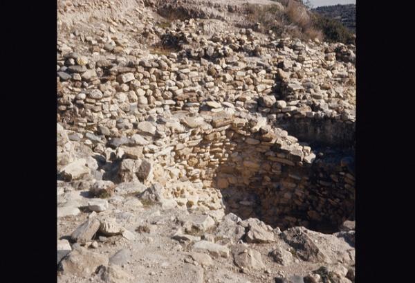 The Choirokoitia Neolithic settlement
