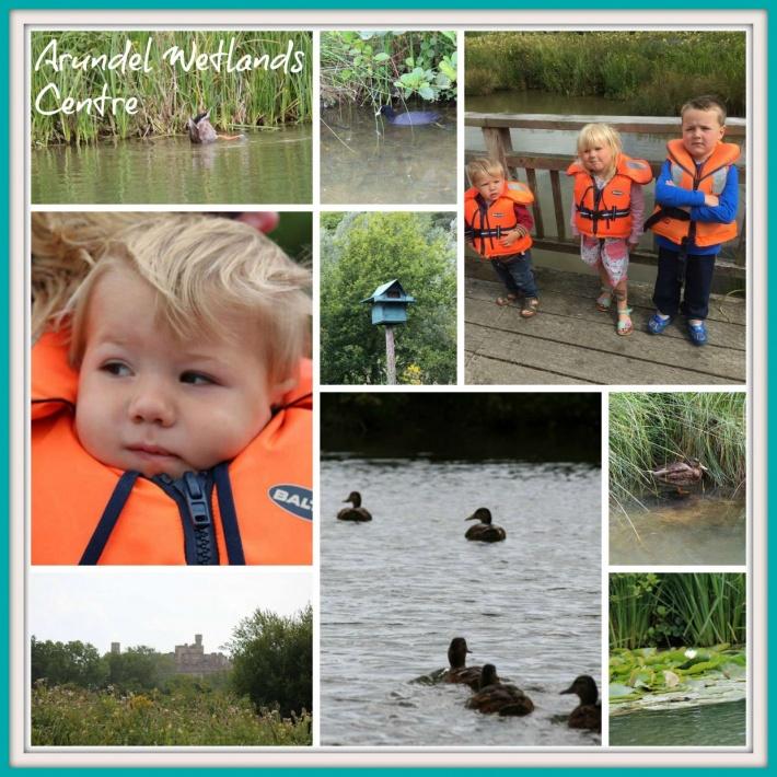 Arundel Wetlands Centre