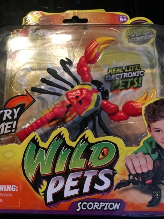 Wild Pets Scorpion