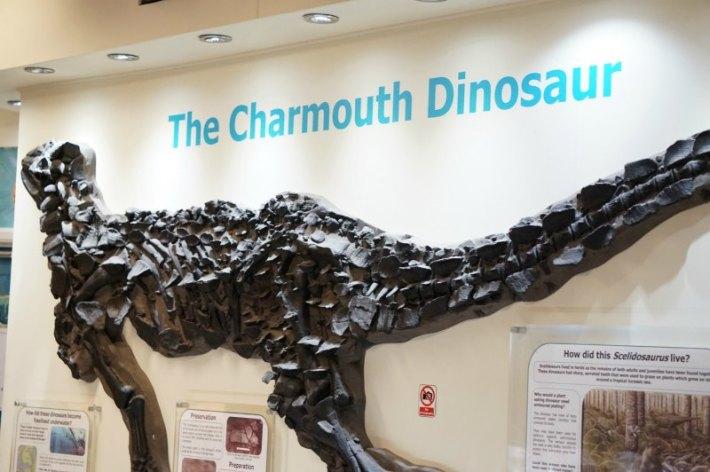 Charmouth Dinosaur