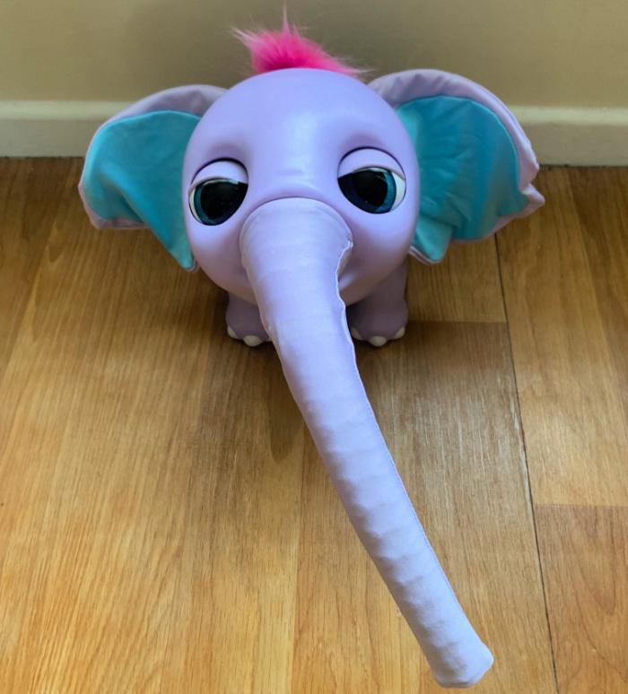 Juno baby Elephant