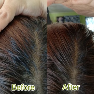 Cover up black hair to mach your current hair color!