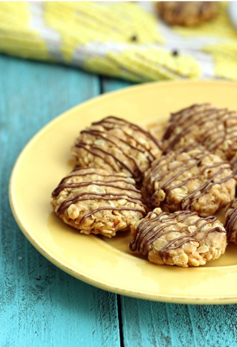 Healthy No-Bake Breakfast Cookies
