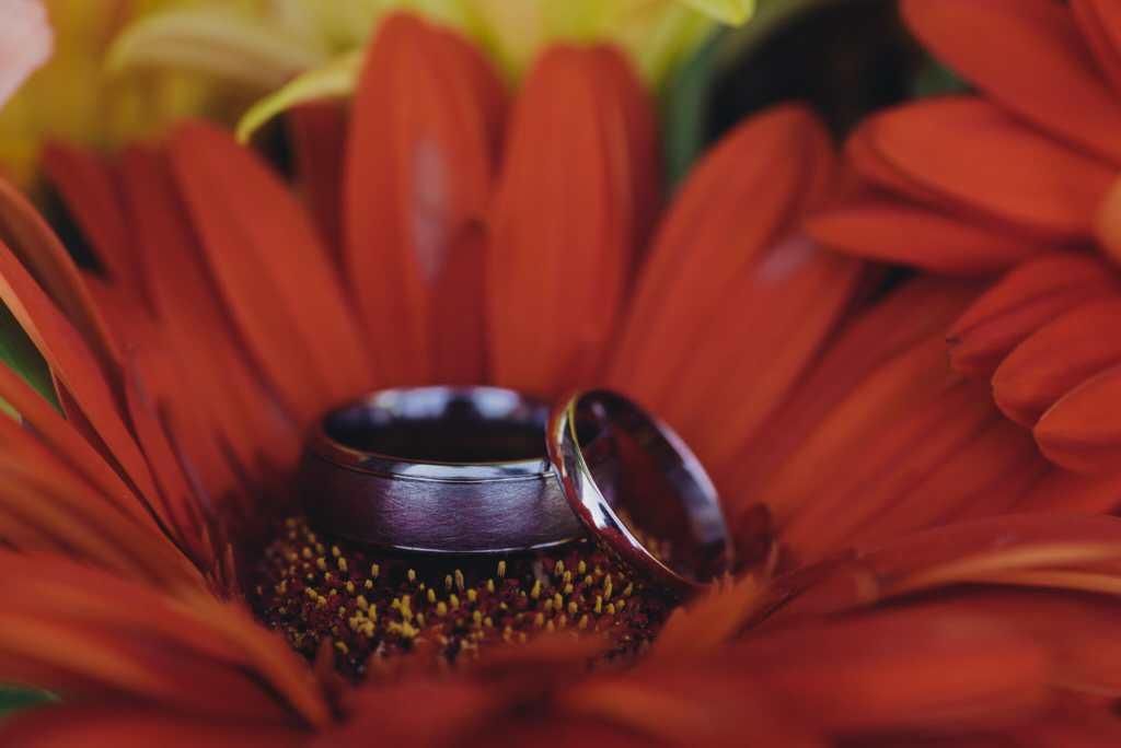 macro wedding ring shot in gerbers