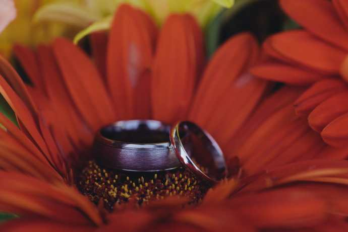 macro wedding ring shot in gerbers