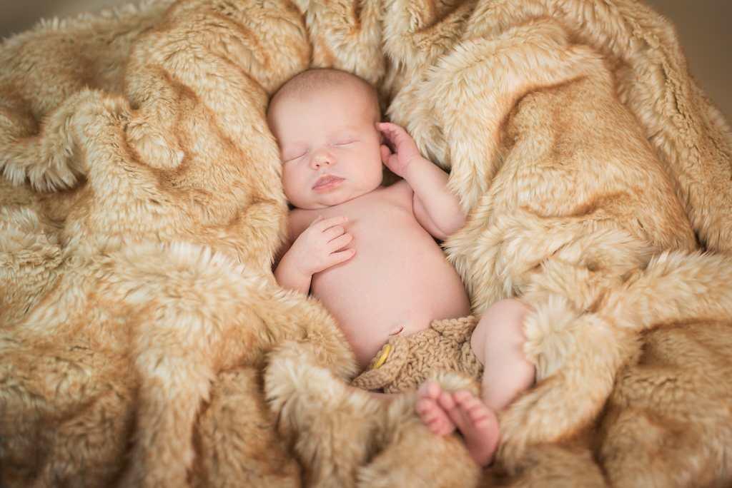 whitby newborn photographer, newborn photography whitby, newborn photographer whitby, 6 days old, newborn baby, newborn photos, newborn photography props, baby girl, week old babies, posing newborns, baby in basket, studio newborn photography, newborn photos