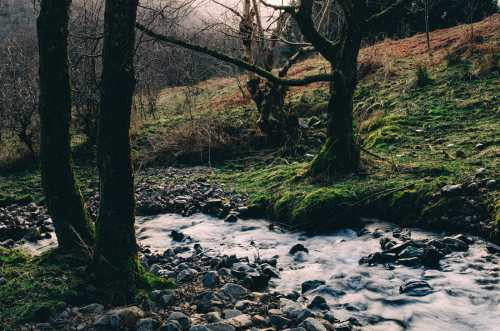 stream near loch leven