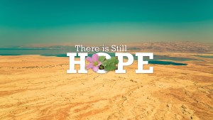 Sermon Series - There is still Hope