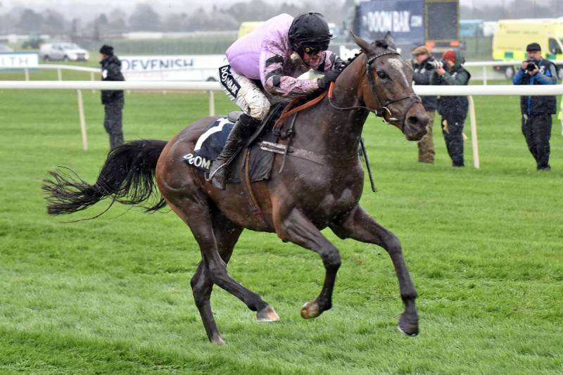 Pentland Hills will be competing in the Champion Hurdle at Cheltenham against stable mate and favourite Epatante.