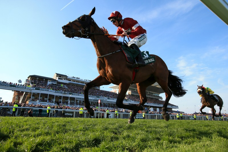 Tiger Roll is one of Paul Jacobs' Cheltenham Day 2 Tips in the Cross Country Chase.