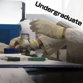 undergraduate 01