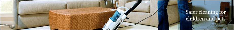 Edenvale Gauteng Carpet Cleaners Carpet Cleaners